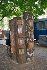 Wie viele Stämme und Fächer hat der Bücherwald?
