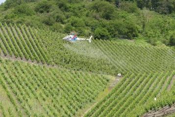 vom Hubschrauber aus mit Gift besprüht