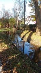 Flehbach renaturiert mit Gehölzpflanzung